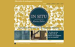 INSITU_WEB.png