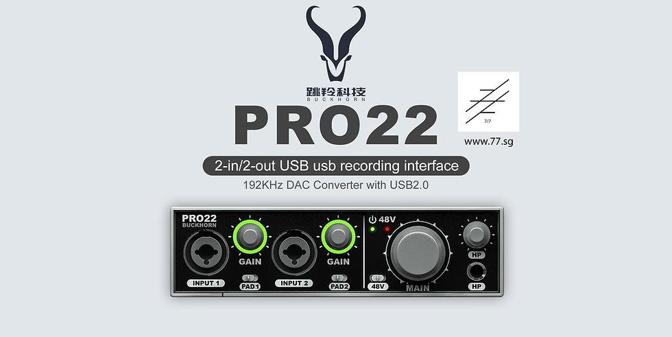Buckhorn Pro 22
