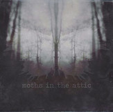Moths in the Attic: Their Debut LP