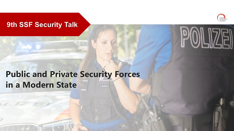 Public and Private Security Forces in a Modern State