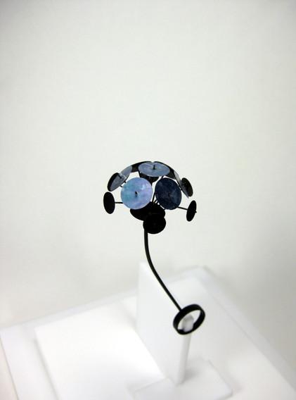 Ring - multidisc