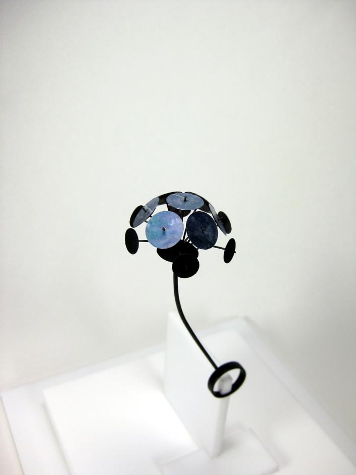 Ring - multidisc M.jpg