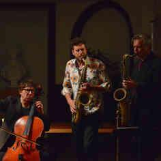 Vincent Courtois trio