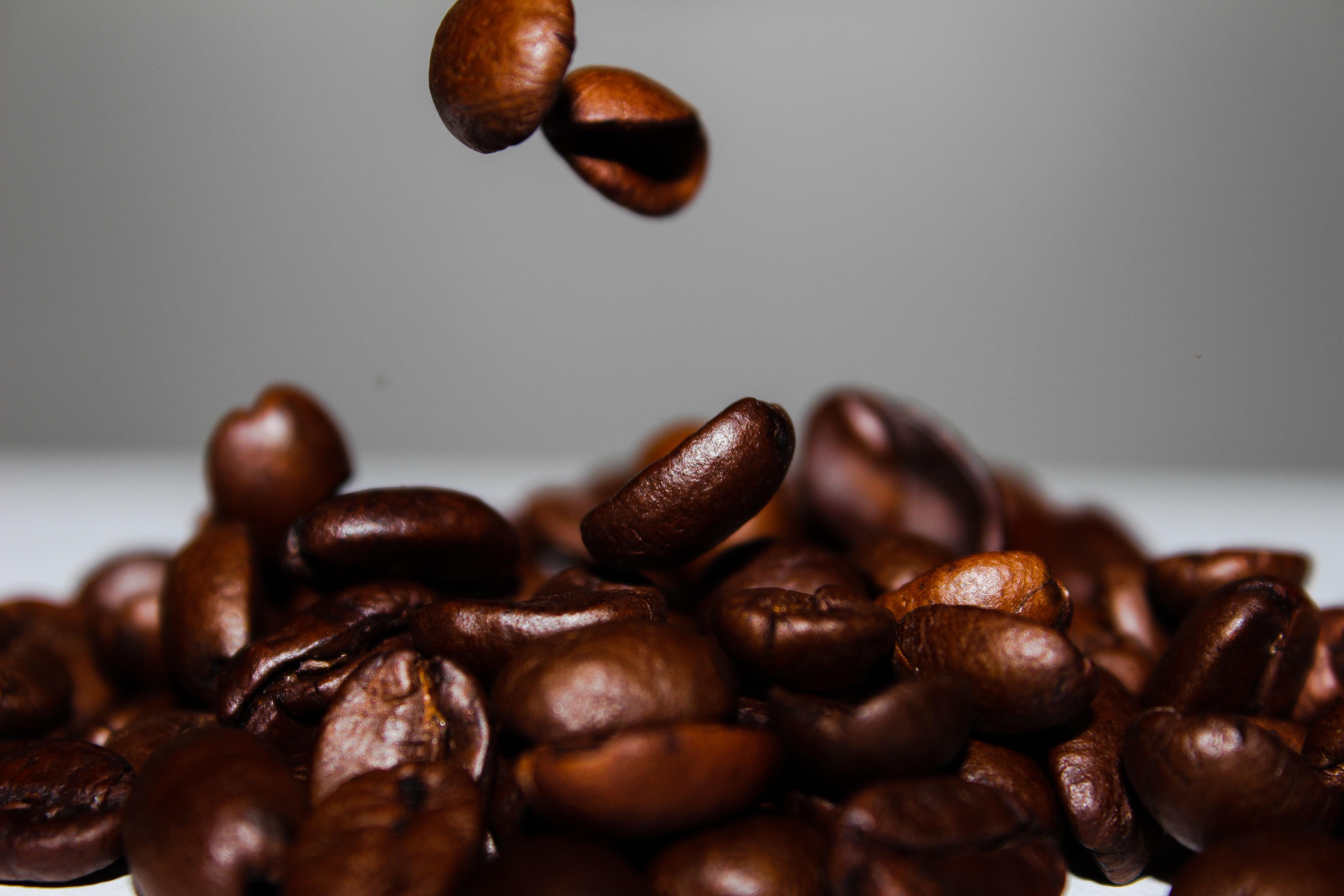 coffee-coffee-beans-falling-40433