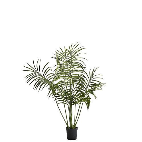 Lene Bjerre - Flora kentia palme - H130 CM. - GRØN- Grøn