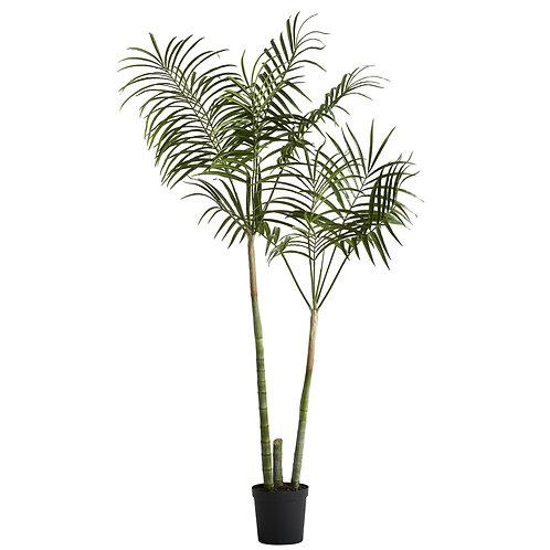 Lene Bjerre - Flora kentia palme - H185 CM. - Grøn