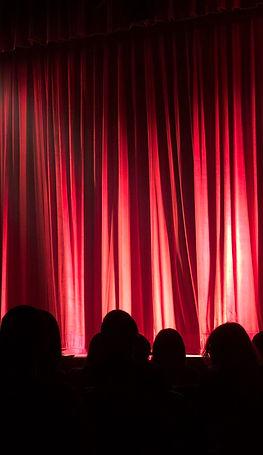 audience-auditorium-back-view-713149_edi