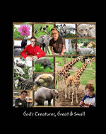 gods creatures great and small.jpeg