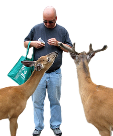 kev%20and%20two%20deer%20feed_edited.png