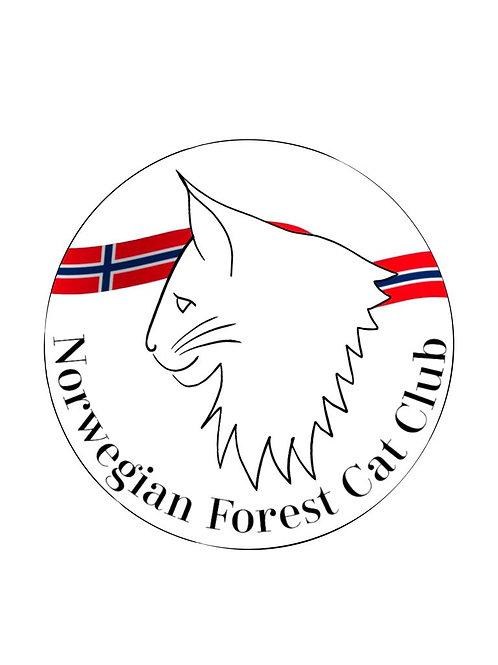 NFCC Norwegian Flag Air Freshener in Pine