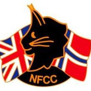 NFCC Pin Badge