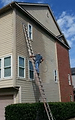 House Paintin