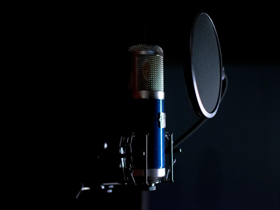 Roswell Delphos II Condenser Vocal Mic