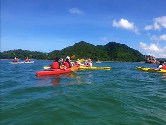 Kayaking tour with Wild HK