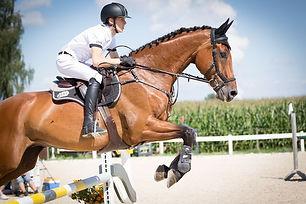 Horse Riding Experience - Chai Wan