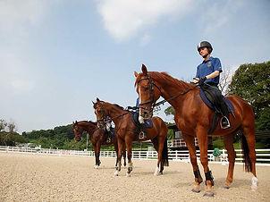 Horse Riding Adventure - Tuen Mun