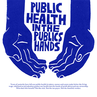 public health in public hands.png