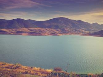 Huella de carbono, el camino a la sostenibilidad ambiental