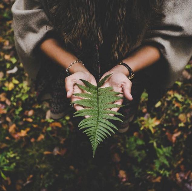 Objectifs de développement durable: quelle contribution de la part des coopératives forestières?