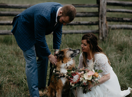 Intimate Elopement in Telluride, Colorado