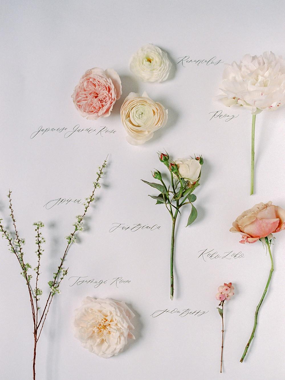 Floral Flatlay
