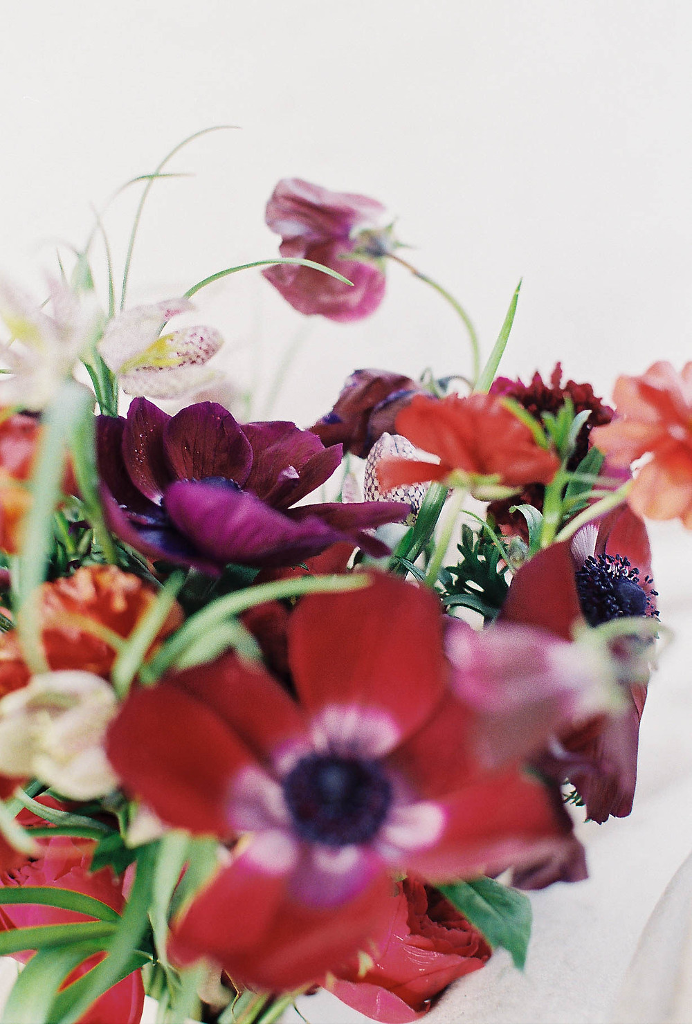 Berry- toned, red anemone bouquet with sweet-peas, fritillaria, ranunculus and scabiosa.