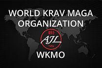 world-organization-kravmaga-levinet-300x