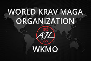 world-organization-kravmaga-levinet-300x