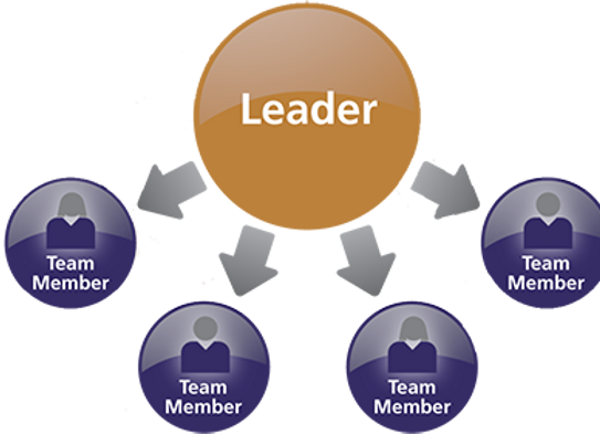 Team Leader View