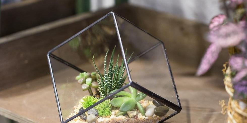 Build Your Own Terrarium