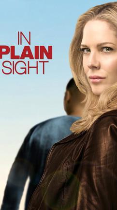in-plain-sight-56b756ece3f4b.jpg
