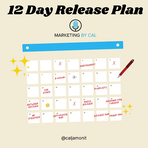12 Day Release Plan How to Promote Your Single