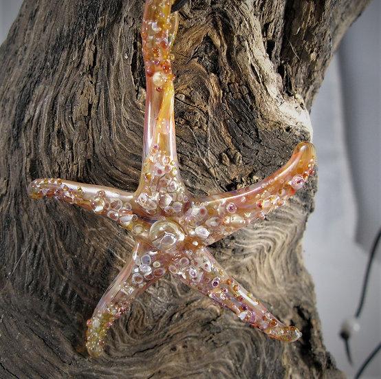 Starfish Boro