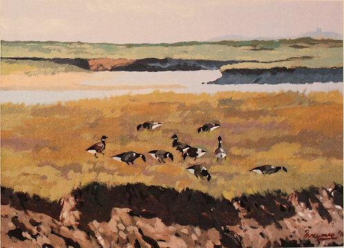 """Brent Geese on Wells Marshes"""