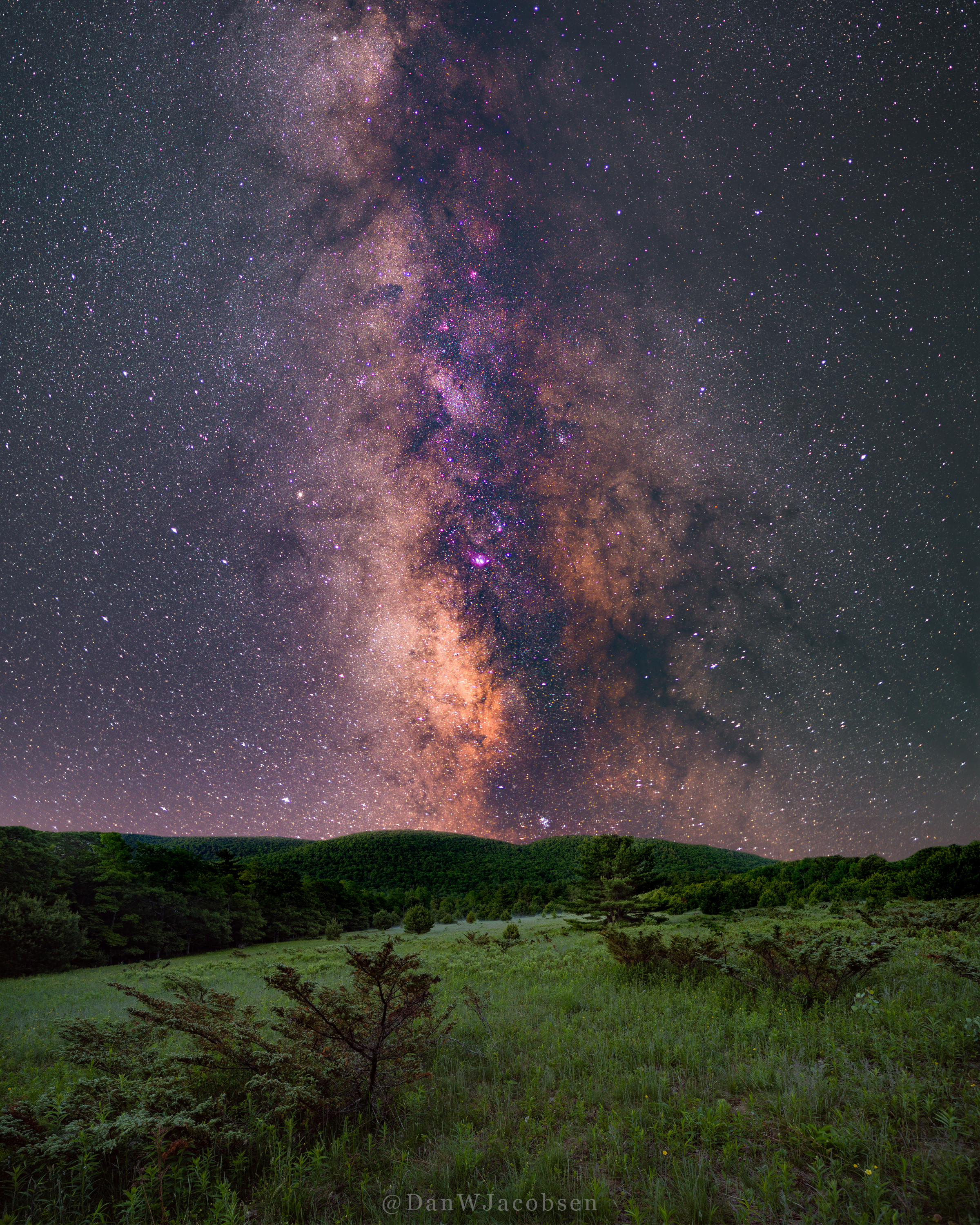 milkyway-meadow-8x10-sm