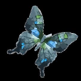Acquerello Farfalla 11