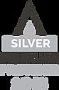 Invisalign-2018-Silver-Provider-196x300.