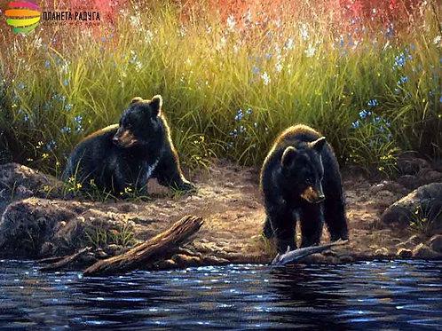 """Картина по номерам """"Любопытные медвежата"""" 40х50 см"""