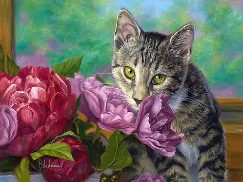 "Картина по номерам ""Котенок и цветы"" 40х50 см"