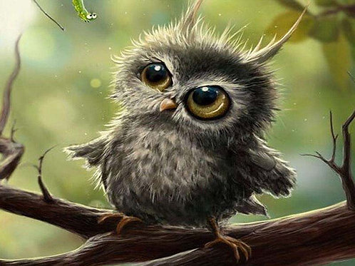 "Картина по номерам ""Милая сова"" 40х50 см"