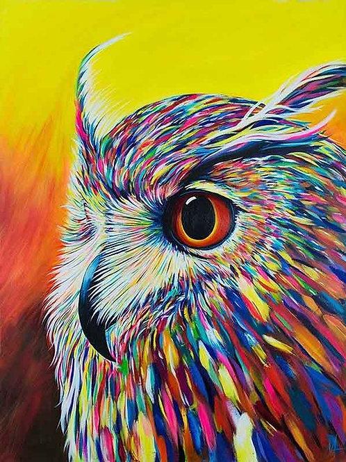 "Картина по номерам ""Красочная сова"" 40х50 см"