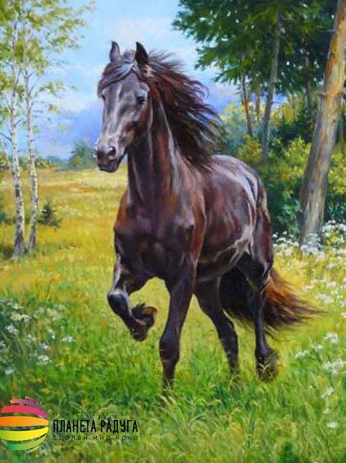 "Картина по номерам ""Конь"" 50х40 см"