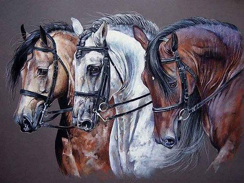 """Картина по номерам """"Лошади"""" 40х50 см"""