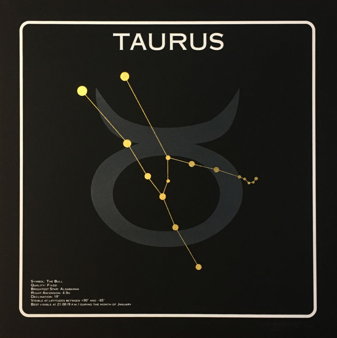 Taurus 1.JPG