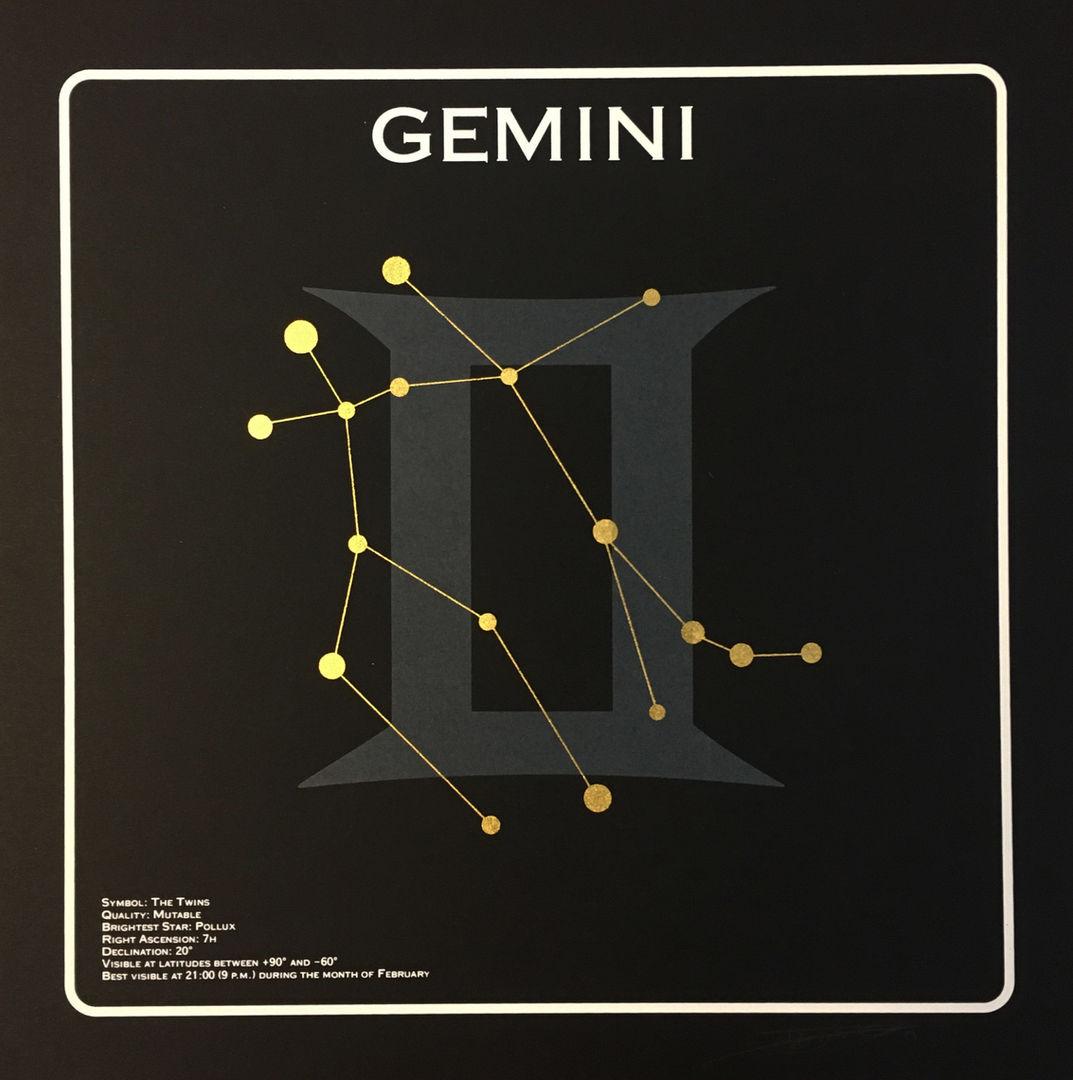 Gemini 1.jpg