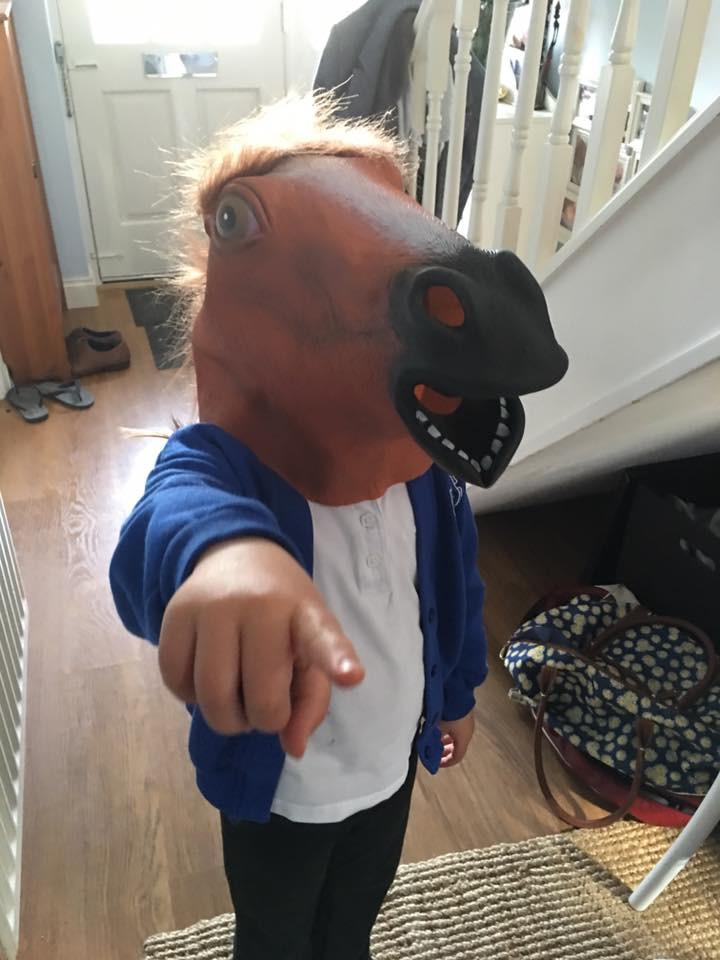Horsebox photobooth props!