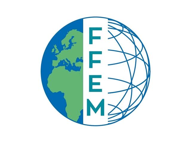 logo-ffem.png