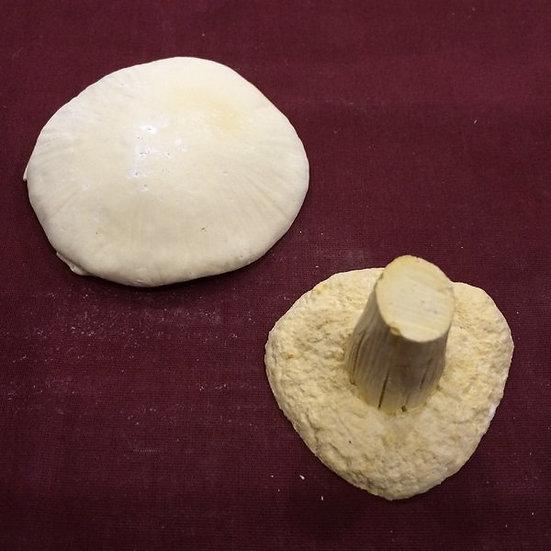 Mushroom Large Disk