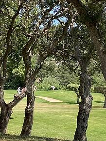 golf Beauvallon 2.jpg