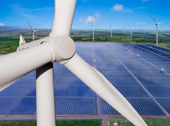 SEF and CISOLAR 2020 synergy:an impetus for the recovery of the renewable energy market